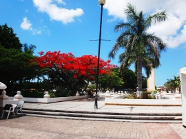 Walking around in Cozumel