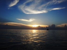 Sunset and bird-Cozumel-Day 1