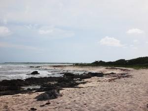 Beach-Cozumel-Day 3