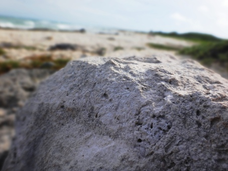 Rock-At beach in Cozumel-Day 3