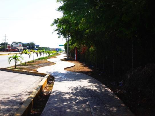 Snake street- Tulum