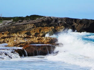 Water on Rocks-Cozumel-Day 3